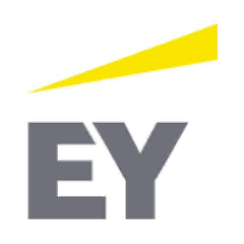 Company logo: ernst & young