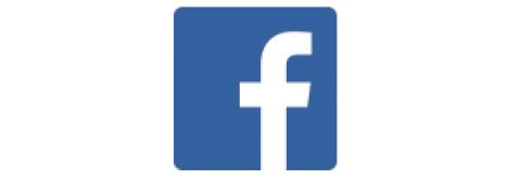 Company logo: facebook