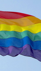 731-80-pride300cm1.jpg