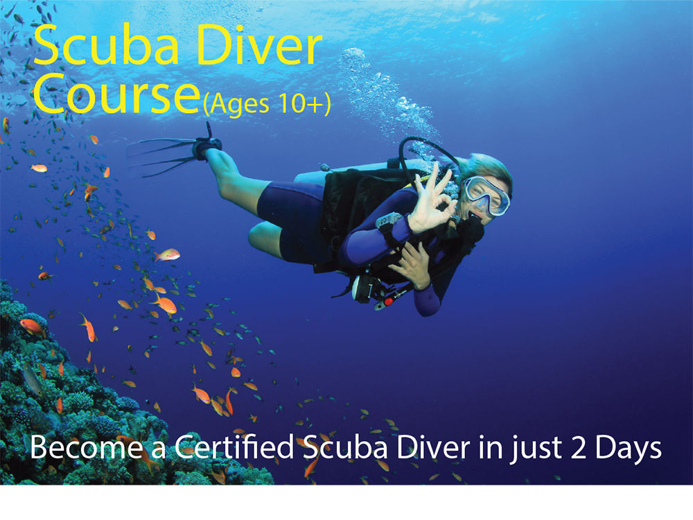 Cool Divers Latchi - divers during dive trip