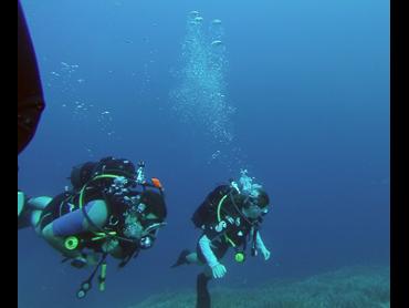 divers in a trip