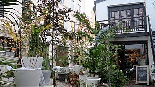 Restauranten Kolonihagen på Frogner