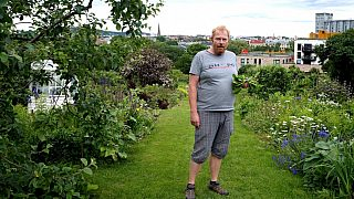 "Terje Rabbersvik har fått en bunke salatblader av en parsellhage-nabo. Her står han midt på ""Karl Johan"" - hovedgata i Egebergløkka parsellhage."