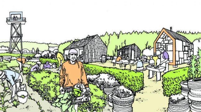 I forslaget til reguleringsplan for Grønmo foreslår Eiendoms- og byfornyelsesetaten å legge til rette for hageparseller og hagebruk, hvor befolkningen kan dyrke frem frukt og grønnsaker til eget bruk