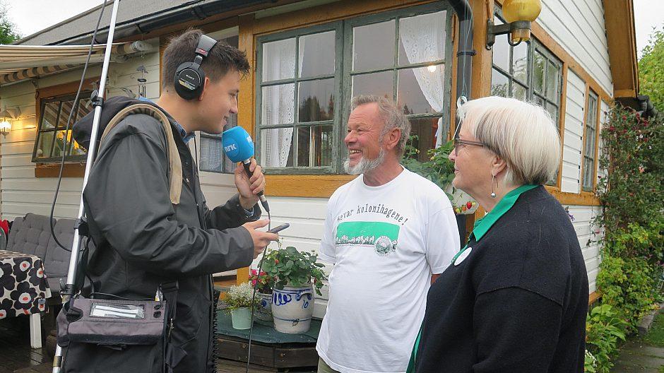 NRK 100 000 adresser