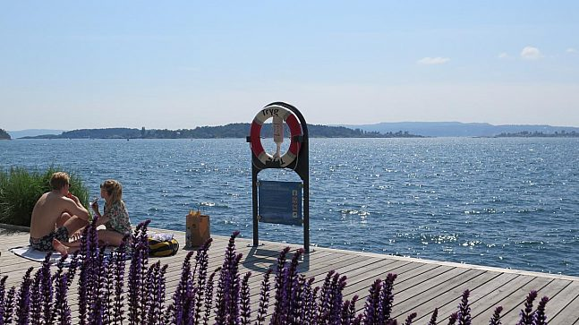 Havnepromenaden