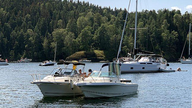 På fjorden møtes båtfolk til sosialt samvær i båtene sine. De kaster ut dreggen og ligger på svai, bader i fjorden, nyter sommeren og lar tiden bare gå.