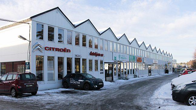 Butikker og bilverksteder dominerer i planområdet.