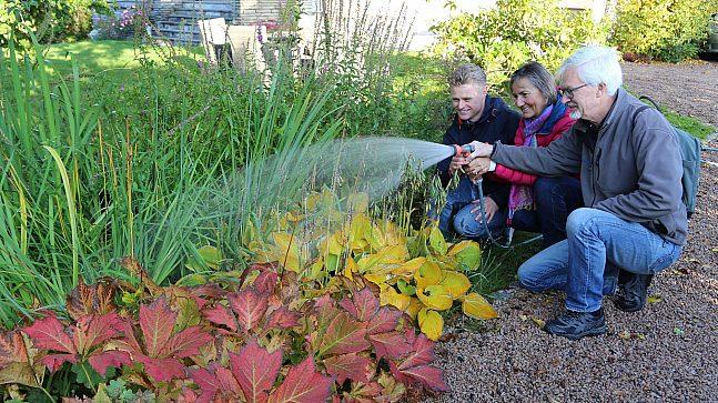 Regnbedet hos Eivind Fremstad tar vare på mye vann, er dekorativt og lett å stelle. Fra venstre Eivind Fremstad, overvannskoordinator Yvona Holbein og urbanhydrolog Bent Braskerud.