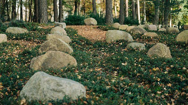 Skogsgravene på Grefsen er snart klare for å bli tatt i bruk. Funksjonen deres skal være at det er et monument å gå til, men som ikke skal vedlikeholdes og stelles som en tradisjonell grav.