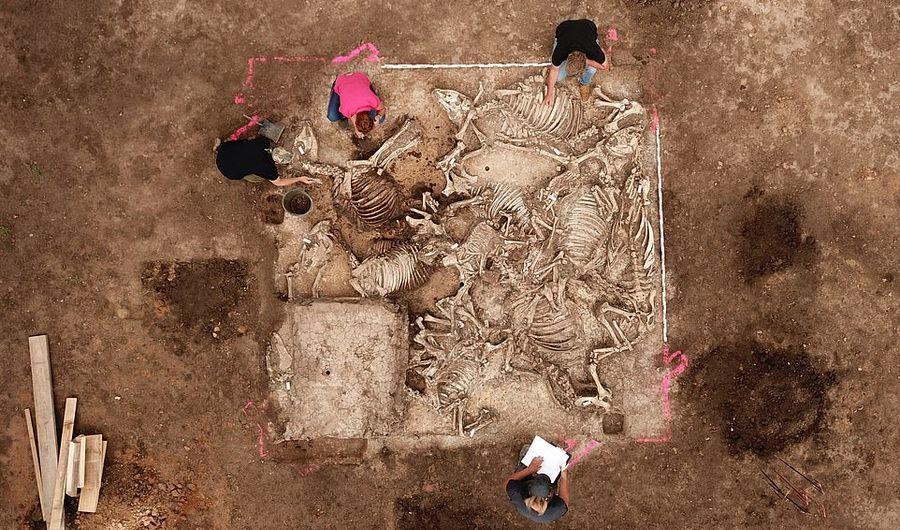 Археологи обнаружили загадочную древнюю гробницу на территории Германии (ФОТО)