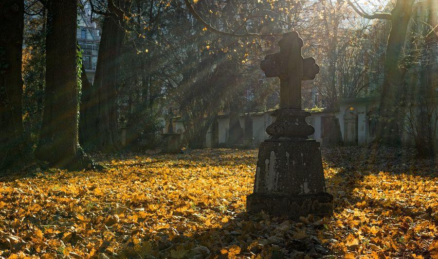 14-річна дівчинка наклала на себе руки після групового зґвалтування на кладовищі
