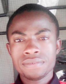 profile image Samuel Adeapin