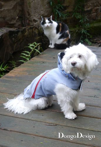 Produktfoto von DongoDesign zum Nähen für Schnittmuster Hundemantel Jack the Zipper