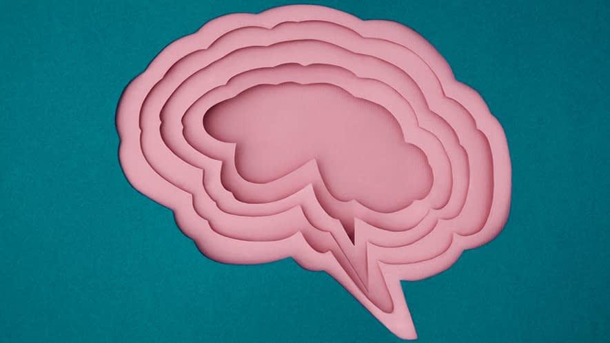 Scherenschnitt von einem Gehirn