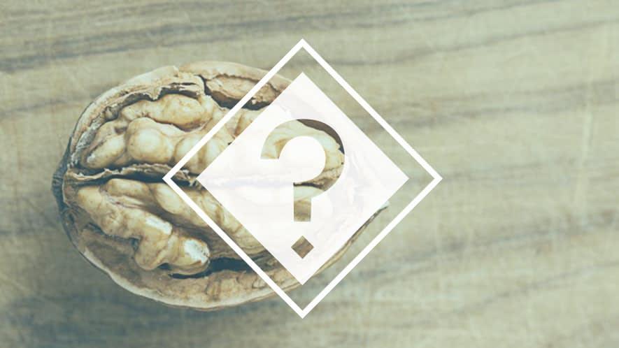Walnuss mit FAQ Symbol