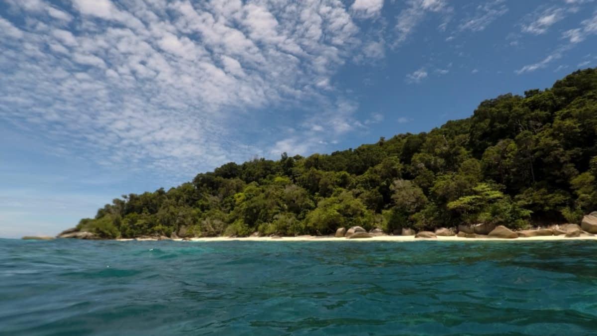 Strand und Meer mit Tropenwald