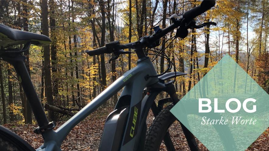 E-Bike steht in herbstlichen Wald