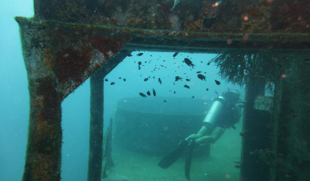wreck diving koh tao