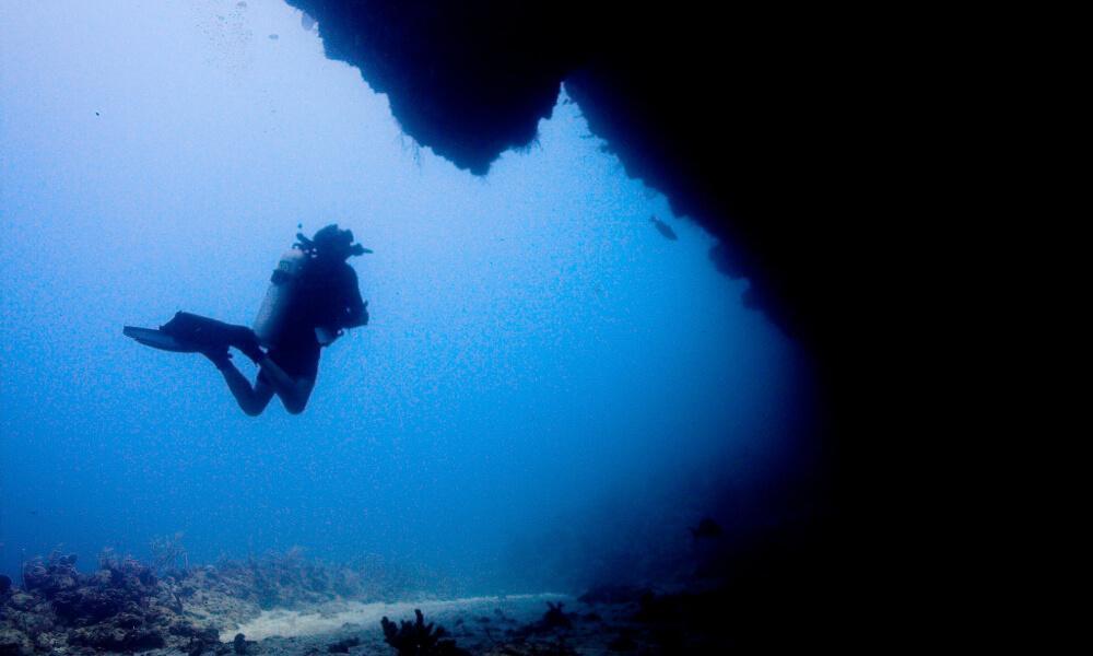 utila scuba diving