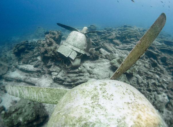 Foto de The Aegean Pro Dive Centre