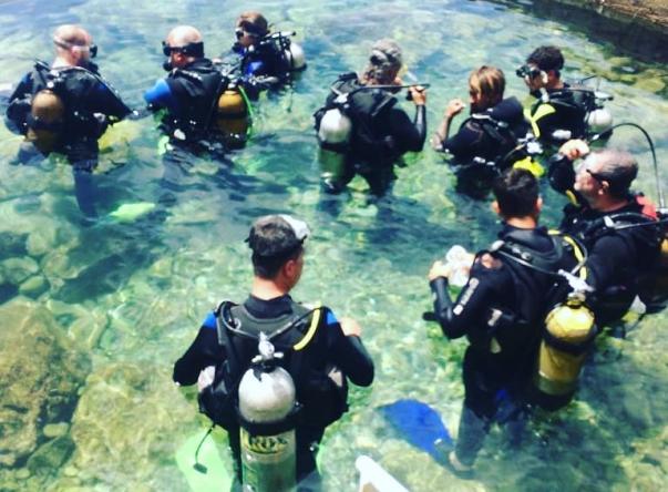 Diver Bees Dive Center Picture