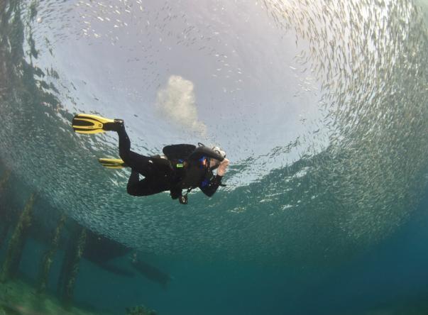Deep Blue Dive Center Picture