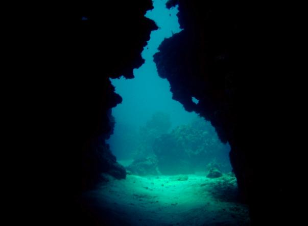 Picture added by Eden Rock Diving Center, Ltd.