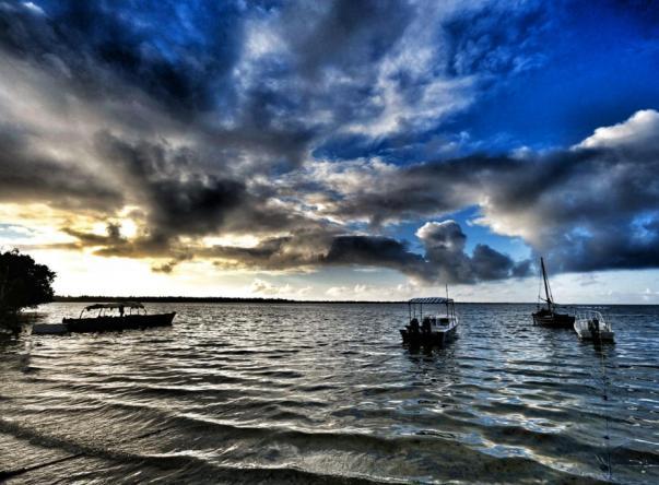Фото Blue World Diving
