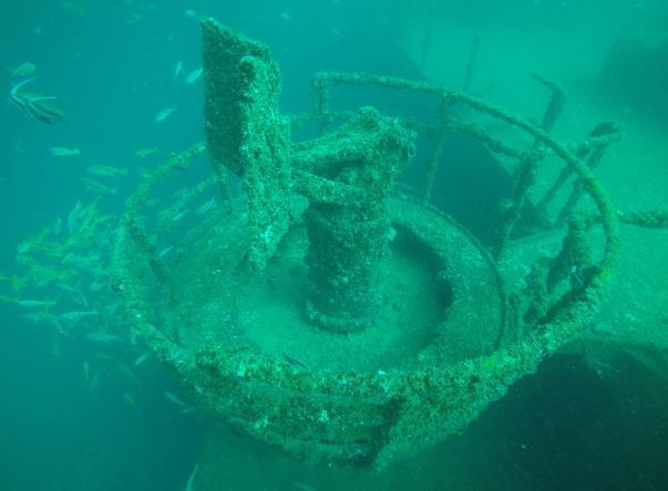 Foto de Octopus Diving Center