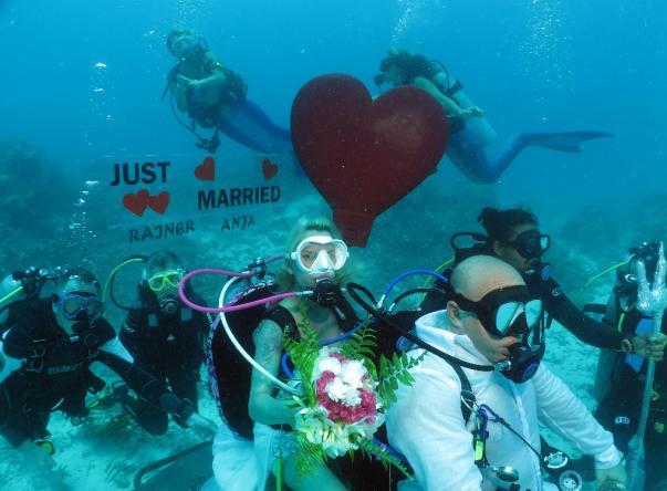 Divepoint Maldives, Rannalhi Imagem