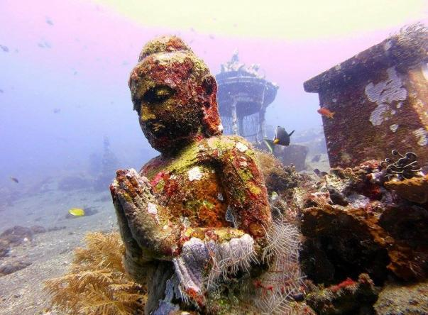 Picture added by Matahari Tulamben Dive Center