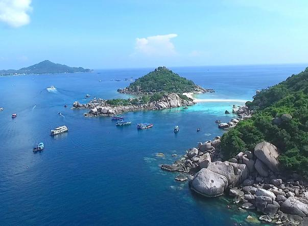 Picture added by Crystal Dive Koh Tao