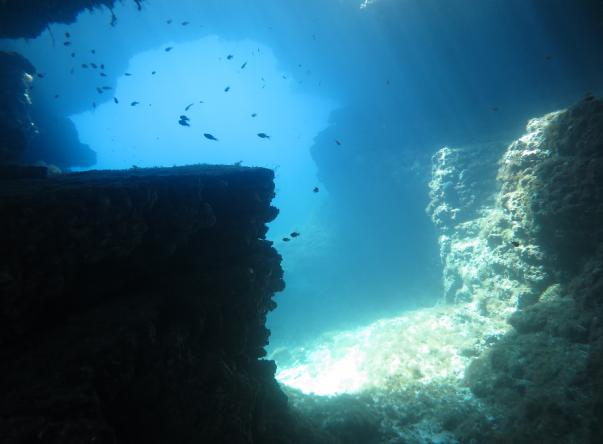 Picture taken by Comino Diveshack at Alex's Cave on juin 17, 2018