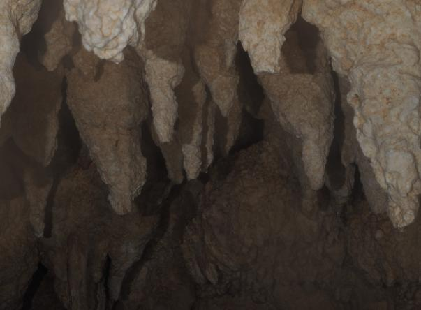 Chandelier Cave's Picture