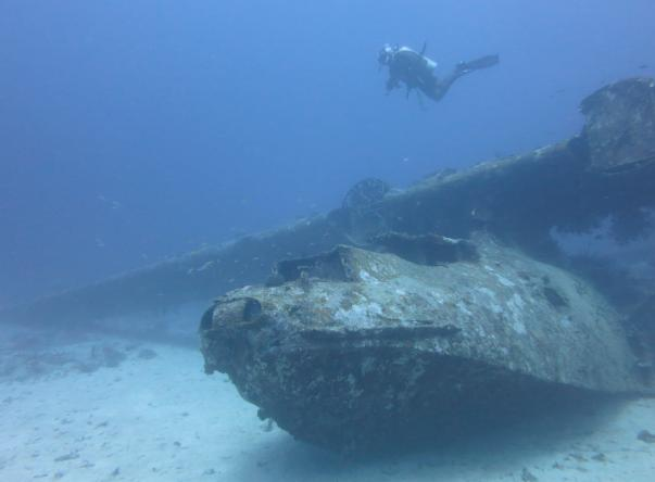 Catalina Wreck's Picture