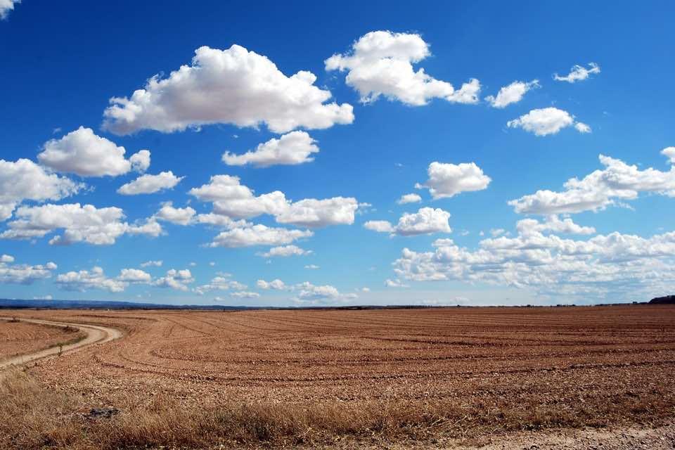 Investir dans une terre agricole