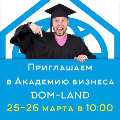 Академия бизнеса DOM-LAND 1 уровня (Кубики судьбы – 1 шт., флеш-карта – 1 шт.)