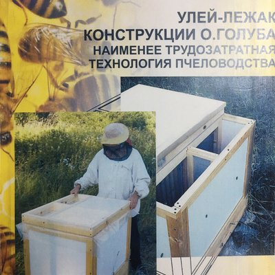 Улей-лежак конструкции О. Голуба. Наименее трудозатратная технология пчеловодства.