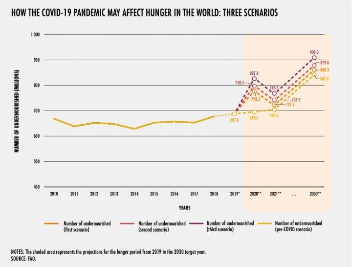 Kaynak:FAO
