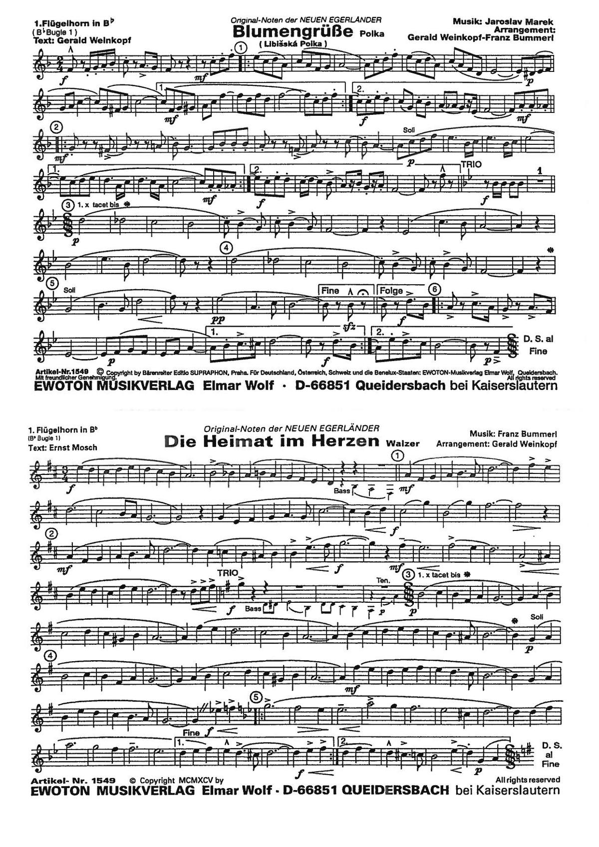 Blumengrusse Libisska Polka Blasorchester Noten Kaufen Im Blasmusik Shop