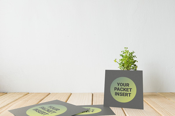 Delegate Packet Mock Up