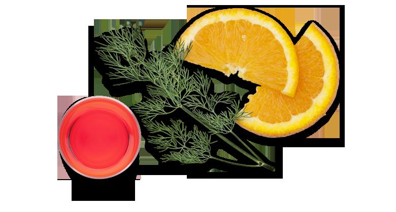 Lachs-roh-mariniert-Aromen-kombinieren-Rezepte-Campari-Orange
