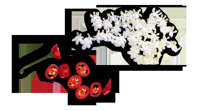 Aromen-kombinieren-rezepte-Garnele-wild-ungestuem-Holunder-Chili