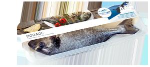 Frischer-Fisch-aus-dem-Kuehlregal-Dorade-Produkte-Spezialitaeten