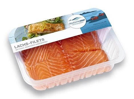 Wie-lagere-ich-Fisch-richtig-SB-Tipps-von-Profis