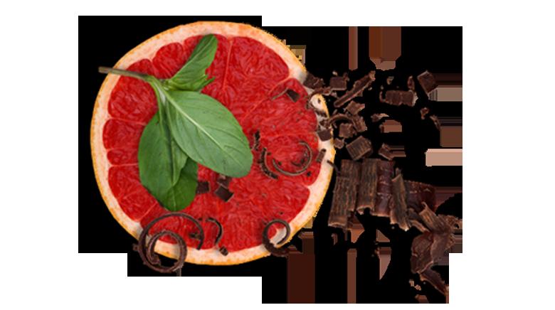 Aromen-kombinieren-Rezepte-Fisch-Schokolade-Orange-Basilikum