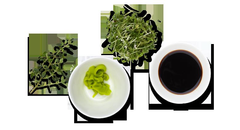 Lachs-roh-mariniert-Aromen-kombinieren-Rezepte-Sashimi-Lachs