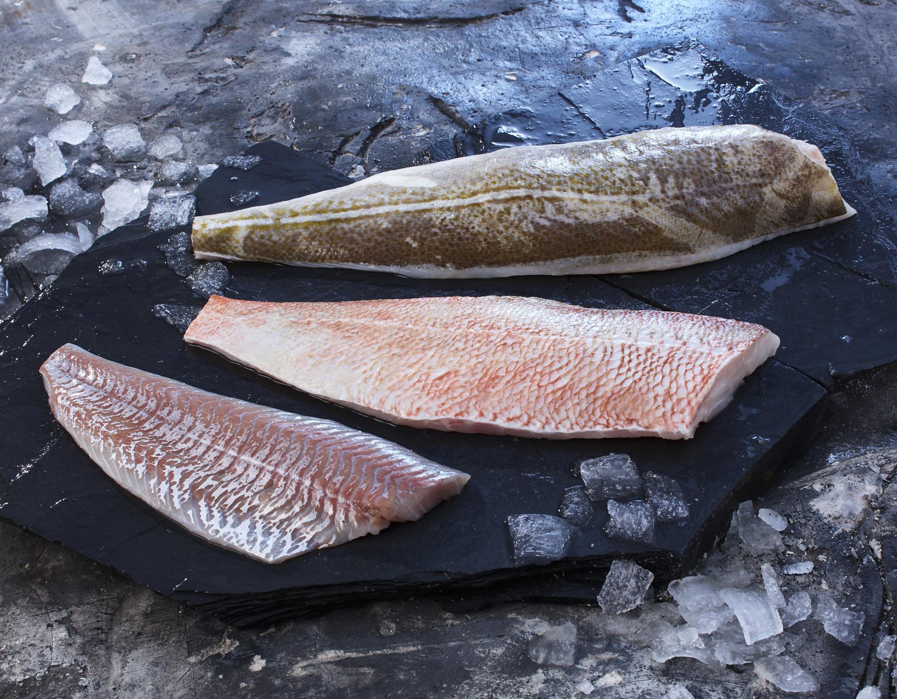 Deutsche See auf der fish international