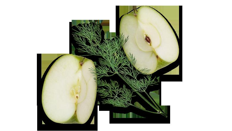 Aromen-kombinieren-Rezepte-Fisch-Apfel-Seelachs-Dill